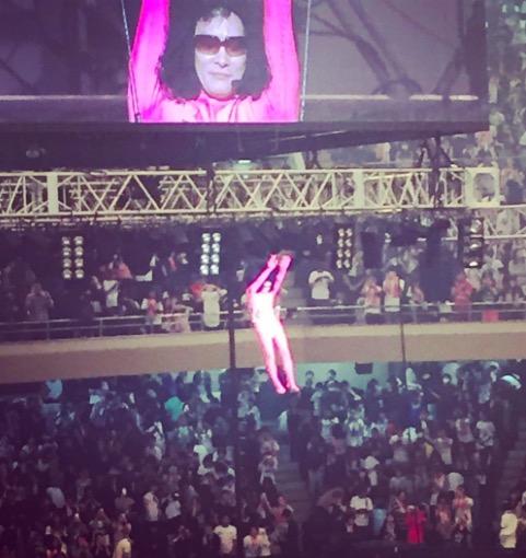 毎年恒例の武道館ライブで宙吊りにされているピンクの人は一体何者??